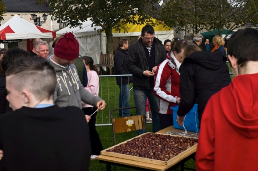Selecting the conkers