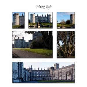Kilkenny castle Pannel